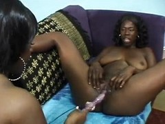 Corpulent mamma black lesbians have some good carnal knowledge